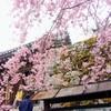 京都 大原  三千院で心まで澄んでいく