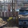 EF66 27充当1155レなど 貨物列車撮影 12/8