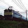 昭和の岐阜を走った列車たち 荷物列車等々