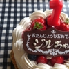 【ミヌエット】Happy 1st Birthday☆