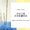 今日のお庭 〜お花の刺繍完成&手作りドッグウェア~