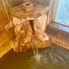 赤城温泉 にごり湯の宿 赤城温泉ホテル(群馬)