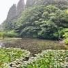 栃ヶ原の棚池( 新潟県十日町)