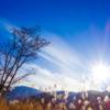 山に沈むは秋の日よ 明日に昇るは冬の日か
