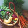 彩り鮮やか!あんがとう農園さんのバーニャカウダ用無農薬野菜セット