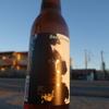 お正月ビール