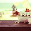 ハワイに呼ばれている気がする。