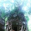 アンコールワット個人ツアー(202)コーケー遺跡プライベートツアー コーケー遺跡と農家観光情報