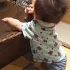 息子の髪がひたすら上に伸びる問題