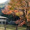 愛媛県内子町 石畳「弓削神社」