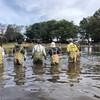 【川づくり・清瀬の会】清瀬金山緑地公園内池の外来種調査・駆除を実施しました