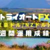 【2019.2.2~2019.2.9】トライオートFXの運用成績🔹コアレンジャー_豪ドル/NZドル🔹