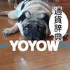 仮想通貨辞典 YOYOW (YOYOW)