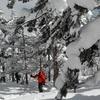 〈個人山行〉Team BCS ゲレンデ&オフピステ~山岳スキートレ~