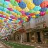 """ポルトガルの傘祭り""""umbrella sky project"""""""