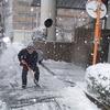 1月22日の雪