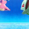 ポケモン好きの救助隊DX【ポケダンDX プレイ日記6】エンディング