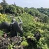 """都心から1時間!大自然を感じれる鎌倉""""天園ハイキングコース""""を歩いてみた"""