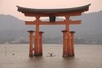 厳島神社だけではない!?広島県・宮島の「紅葉谷公園」の紅葉が美しい!