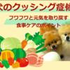 犬のクッシング症候群、フワフワと元気を取り戻す食事ケアのポイント