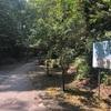 昭和30年に県の天然記念物に指定された、パワースポット!溝ノ口洞穴 ひんやり洞穴は夏にお勧め!