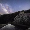 【天体撮影記 第56夜】 長野県 駒つなぎの桜舞う星空の夜に
