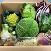 『久保田農園』の美しすぎる野菜セット