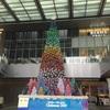 名古屋駅前になんだかイカすクリスマスツリーが出来てましたね