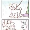 雨の日のお散歩【117】