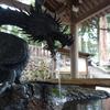 【岐阜旅行】雨の『白川郷・飛騨高山』で聖地巡礼と森林浴【写真と動画】