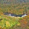 ◆'19/10/18   鶴間池③