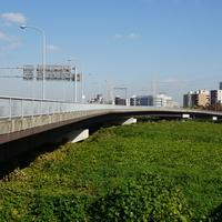 ワールドカップ大橋