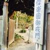☆絶景 & お城 & 猫 & ヒヤシンス