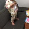 ボタンの練習には、西松屋のパジャマがおすすめ!