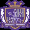 Salaries of J.League Sanfrecce Hiroshima Players, 2015