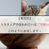 【ネイティブ】英語スラングで使われてる『可愛い』はこう言うとネイティブに聞こえます!
