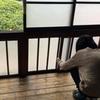 東京の中央線沿い!古民家リノベーション物件巡りの旅!阿佐ヶ谷・西荻窪・三鷹・武蔵境ダイジェスト版!
