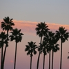 危険な熱波のカリフォルニアで、なぜ計画停電が起きるのか