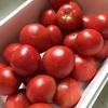 今日の朝食 2019/07/29 トマトの大量消費はとりあえず冷凍保存