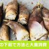 【料理】たけのこの下茹で(あく抜き)と定番の大量消費方法【簡単レシピ】