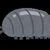【気になるおもちゃ】ガシャポン 丸まるダンゴムシ【BANDAI】