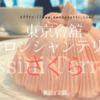 大好き「マロンシャンテリー」季節限定【さくら】東京會舘 ロッシニテラスにて