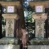 京都から乗り換えなしの穴場旅行地!広い、緑いっぱい、気持ちいい!奈良観光定番コース