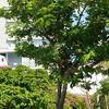沖縄県・那覇ビジネスホテルのおすすめ人気ランキング8選