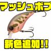 【ジャッカル】狙って仕掛けるスモールクランクベイト「マッシュボブ」に新色追加!