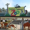 【外出】埼玉こども自然動物公園感想