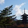 奈良公園・興福寺