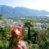 本気で移住したいスイスの魅力④ちょっとカナダと似てる?