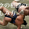 【絶対怒られる】好きじゃない人でも見たくなる相撲の楽しみ方【邪道】