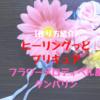 【作り方紹介】ヒーリングっどプリキュア❤︎フラワーメロディベル風タンバリン